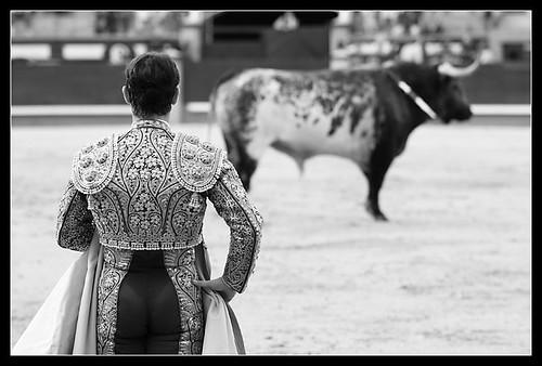 Luis de Pauloba con toro al fondo