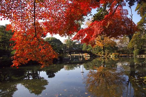 The Shosei-en Garden (東本願寺渉成園)