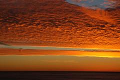 Sunset @ Half Moon Bay, California (vgane) Tags: california sunset sky dramatic dslr halfmoonbay soe breathtaking canon30d theunforgettablepictures