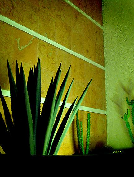 Condesa DF Hotel
