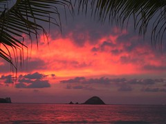 Ixtapa Sunset (christina.visions) Tags: travel sunset beautiful photography post oceanview without limitations flickrs 5photosaday wwwflickrcomgroupstravelphotography diamondclassphotographer flickrdiamond seasunclouds topsunsetsofourhearts travelon5photosaday catchycolorsrose