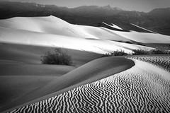 Dunes in B&W (Carol-R) Tags: bw blackwhite deathvalley tonemap