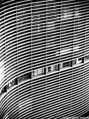 Windows... (Fernando Delfini) Tags: windows bw white black lines linhas contrast de cross sopaulo pb illusion sampa sp processing infrared fernando paulo effect so copan iluso grafism grafismo optic emulation delfini ptica cameradeourobrasil