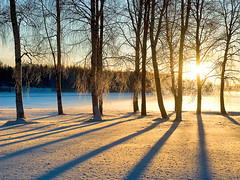 January sunrise (Henri Bonell) Tags: trees winter snow sunrise finland bravo searchthebest january lumi soe naturescall magicdonkey golddragon mywinners abigfave twtmeiconoftheday superaplus aplusphoto henribonell flickrplatinum infinestyle diamondclassphotographer theunforgettablepictures goldstaraward flickrestrellas
