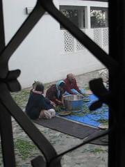 IMG_0665.JPG (Michael Ferranti Photography) Tags: india men beach women faces priest spiritual shiva mumbai krishna hindu sari yatra pune swami juhu harekrishna chowpatty ayurveda iskcon radhe radhagopinath balanuth gothamayurveda michaelferrantiphotography mferrantiphoto