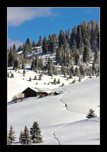 Winter Landscape por Maciej clubfoto.lu.