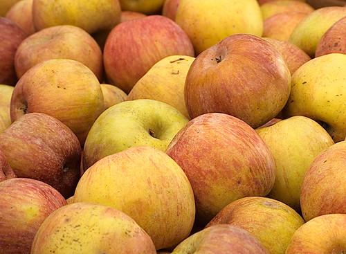 Farmer's Apples