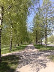 A nice footpath by Iidesjärvi
