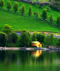 N O R D I C village (Prabhu B Doss) Tags: green norway landscape countryside nikon europe village indian sigma wideangle villages voss greenery nordic dslr 1020mm scandinavia norwayinanutshell tours fjords flam midnightsun aurland prabhu flamsbana 70300 woodenhouses naturesfinest nikonian flamrailway sognefjorden sigma1020 nikondslr d80 nikonstunninggallery bergensbanen nikond80 70300vr diamondclassphotographer flickrdiamond indianphotographers prabhub prabhubdoss westnorwayfjord prabhuboomibalagadoss