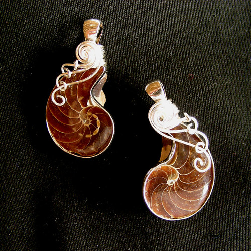 YING YANG - Two Wire Wrapped Ammonite Fossil Pendants/Necklaces.
