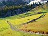 divergence (kosova cajun) Tags: road snow landscape kosova kosovo paths ruts alpinemeadow peisazh accursedmountains takeninjune qemdfinchadminsfavfornov bjeshkaejunikut junikhighlands bjeshkaenemuna
