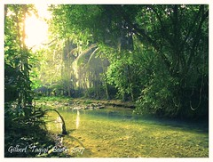 "My 200th Photo (Gilbert ""Tagigi"" Baron) Tags: water spring philippines finepix cebu gilbert fujifilm kawasan baron badian blueribbonwinner cebusugbo matutinao s9600 tubod pinoykodakero tagigi"