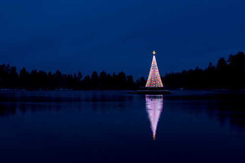 Christmas tree on the lake, by Junnn.