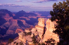 Grand Canyon Facts, Arizona Colours, Timeless Wonder (moonjazz) Tags: park pink light arizona heritage beauty yellow contrast wonder nationalpark beige treasure view superb time grandcanyon fine canyon cliffs best creation zen excellent geography geology awe pure timeless finest masterpiece facts veiwpoint purole