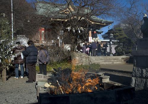 new year's day - shinmei shrine