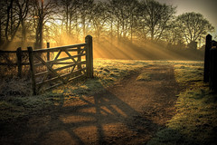 Sun's Rays and a Gate (-terry-) Tags: morning trees shadow sun cold wales sunrise gate frost rays thumbsup hdr breathtaking monmouthshire blueribbonwinner caldicotcastle caldicot cotcmostfavorited supershot 3wayicon platinumphoto superaplus aplusphoto diamondclassphotographer flickrdiamond flickrchallengewinner 15challengeswinner great123 caldicotcastlecountrypark absolutelystunningscapes thepinnaclehof kanchenjungachallengewinner k2challengewinner tphofweek145