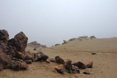 Wandeling op de Teide in de mist - gevoelstemperatuur: vrieskou