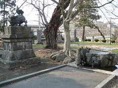 IMG_1973.JPG (jrkester) Tags: japan hirosaki 2008