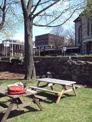 Roger Williams Memorial Park (katybeck) Tags: graphicdesign mfa thesis process risd gradschool gradstudio typeinlandscape