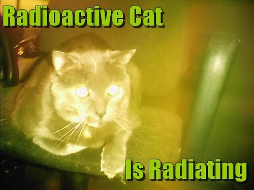 Radioactive Cat is Radiating