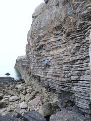 Fedwr Fawr, Anglesey
