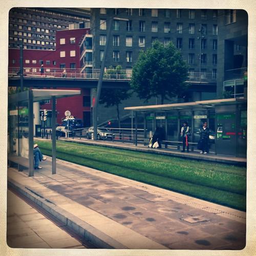 <span>bilbao</span>I tram passano sul prato.<br><br><p class='tag'>tag:<br/>bilbao | persone | </p>