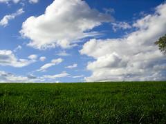 The Last Of Summer (trekkyandy) Tags: sky cloud green nature field grass weather clouds bluesky ciel nuage nuages mto mtorologie meltonphoportfolio