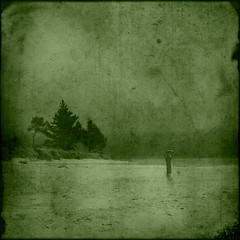 Unheard music (borealnz) Tags: trees sea texture beach pine umbrella square landscape person sand bravo searchthebest grunge surreal scratches toned pinetrees manray bsquare magicdonkey outstandingshots winnerflickrsweekly50contest artlibre magicdonkey25 superbmasterpiece infinestyle borealnz