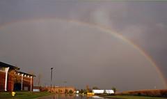 Large Rainbow