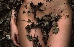 (kamyliiz) Tags: hojas mujer arte natural camila desnudo sacas abtracto
