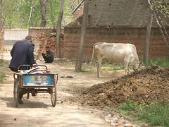 Salariscontrole platteland