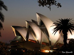 Opera house at dawn - Sydney (kees straver (will be back online soon friends)) Tags: city longexposure bridge sky house water architecture night dawn twilight opera harbour sydney silhouettes australia palmtree nsw newsouthwales operahouse harbourbridge downunder sydneyoperahouse australie musictomyeyes worldwonder themoulinrouge nodust 10faves mywinners mywinner platinumphoto anawesomeshot aplusphoto ultimateshot isawyoufirst auselite brillianteyejewel artistsoftheyear theperfectphotographer aworldicon goldenglobe1awards keesstraver 1000bestplacesonearth tropicalblizzard