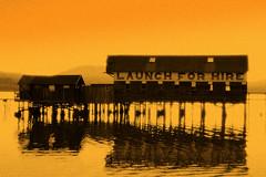 Morning Paddle (Philippe Vieux-Jeanton) Tags: california marincounty pointreyes westmarin inverness tomalesbay amazingshot flickrsbest anawesomeshot diamondclassphotographer heartawards givemeratings colourartaward colourartawards flikrsun