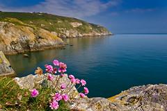 Cliffs at Howth