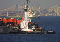 FREEDOM SERVICE in New York, USA. 2005 (Tom Turner - SeaTeamImages / AirTeamImages) Tags: city nyc bridge newyork water ferry skyline brooklyn port bay coast harbor boat marine ship harbour manhattan transport vessel pony maritime transportation anchor oil tugboat tug bigapple tow barge channel tanker waterway towing petroleum tomturner freedomservice