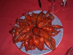 CIMG1918 Kräftor (crabs) (angela-hh) Tags: finland aland bluepenguins