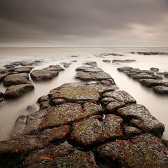 Maer Rocks (Adam Clutterbuck) Tags: ocean uk longexposure greatbritain sea england cloud seascape seaweed colour beach square landscape coast rocks cloudy unitedkingdom britain coastal devon shore gb oe exmouth shorescape greengage maer showinrecentset southdevoncoast openedition maerrocks