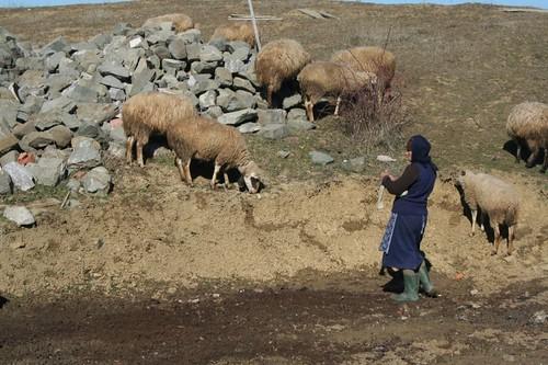 Femeie în Albania