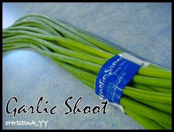 Garlic Shoot