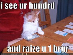 i see ur hundrd and raize u 1 brgr ((     )) Tags: cat funny lol can has cheezburger lolcats lolcode