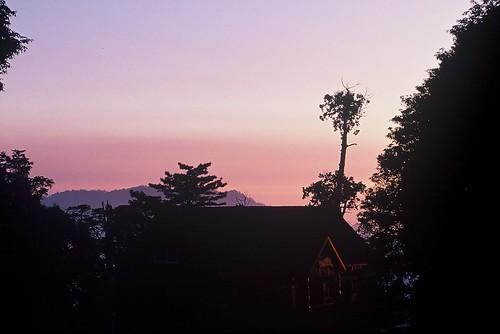 大雪山森林遊樂區晚霞