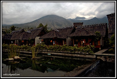 sleep well ... have a dream