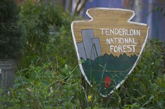 Tenderloin National Forest Sign