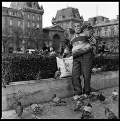 Birdman Of Notre Dame (candersonclick) Tags: paris france film church square trix notredame hasselblad 400 medium format superfantastique dame 80mm hassy canderson filmisnotdead autaut bhphotoleicastreetphotographycontest