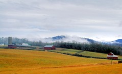 A Blue Ridge Farm (☩ D L Ennis) Tags: morning mist rain misty fog clouds barn rural fence virginia early farm country foggy silo rainy fields backroad blueridgemountains amherstcounty dlennis winter's ablueridgefarm