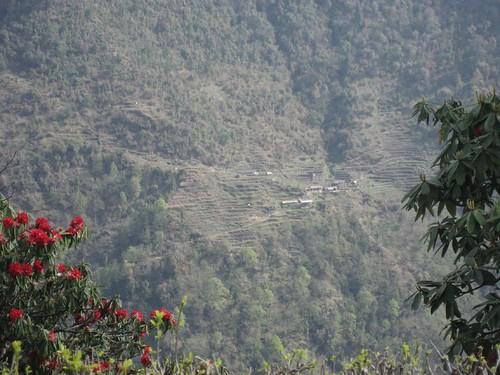 Sinuwa as seen from Chomrong