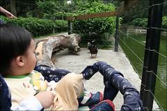 新竹市立動物園10