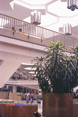 Northridge (ezeiza) Tags: film retail wisconsin architecture scan milwaukee shoppingmall shoppingcenter northridge filmscan defunct taubman deadmall northridgemall browndeer regionalmall retailcenter taubmancompany