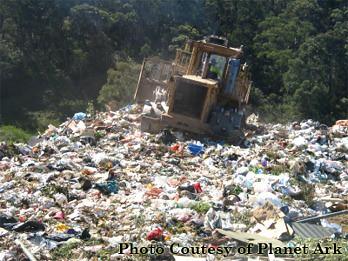 Plastic bags land-fill