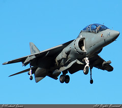 US-Marines McDonnell Douglas TAV-8B Harrier II+ (164122) (Michael Davis Photography) Tags: airplane photography nashville aviation flight jet landing marines runway jetfighter usmarines fighterjet kbna militaryjet av8bharrier marinecorp goldstaraward mcdonnelldouglasharrier 164122 tav8b